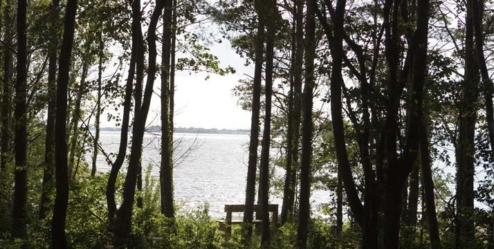 Vista del lago Ennell desde Belvedere House Park